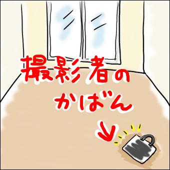 11091202.jpg